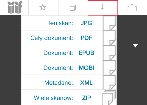 """Żeby pobrać e-booka wystarczy kliknąć w ikonę """"Pobierz"""" widoczną w prawym górnym rogu i wybrać jeden z dostępnych formatów."""